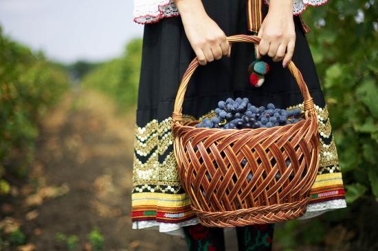 winetours-moldova